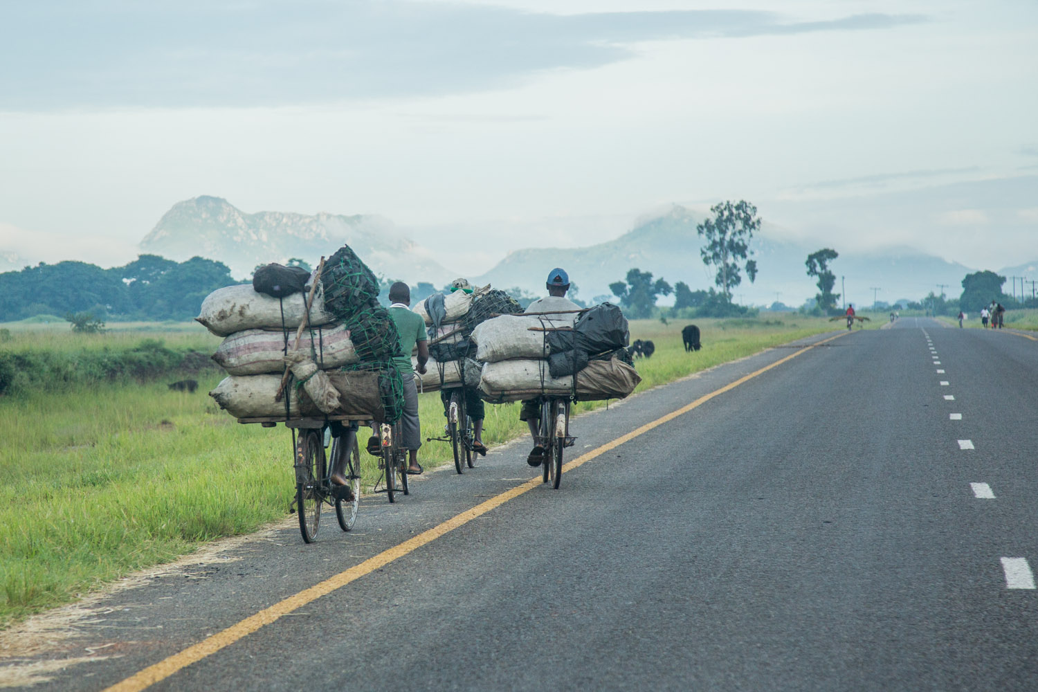 Men cycle with bags of charcoal, mountains in the background